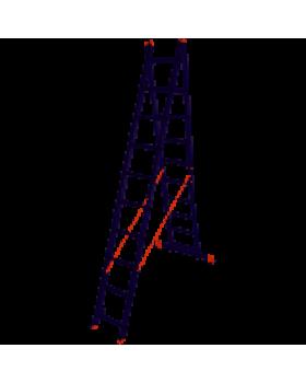 Лестница 2-х секционная Laddermaster Sirius A2A10 2*10 ступ